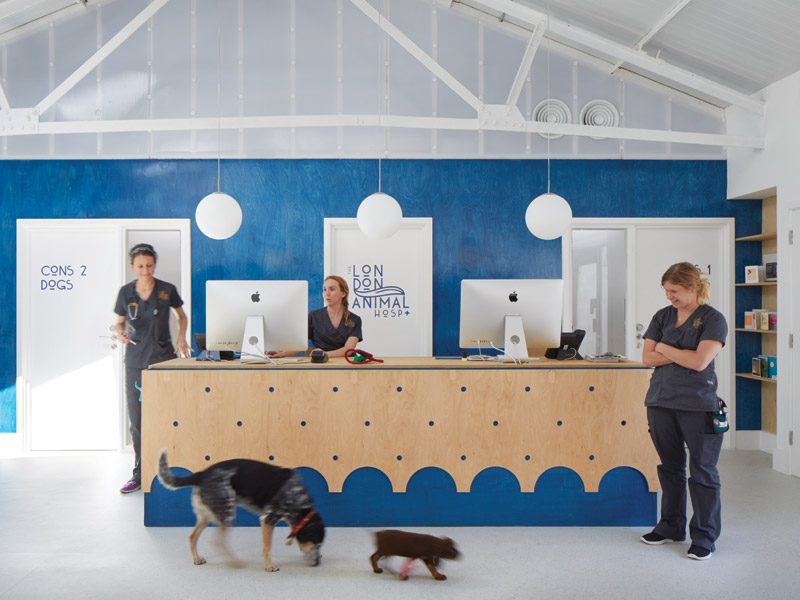The London Animal Hospital by alma-nac